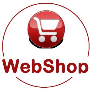 webaruhaz-keszites